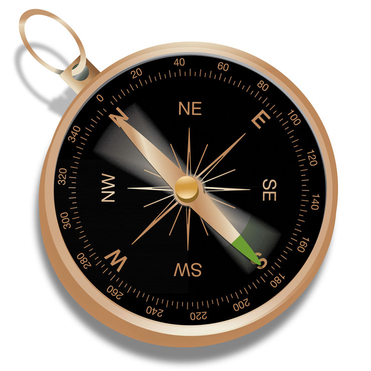 Picture Of Black Brown Compass